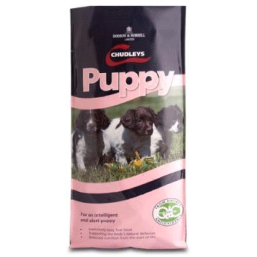 Chudleys Ex Puppy