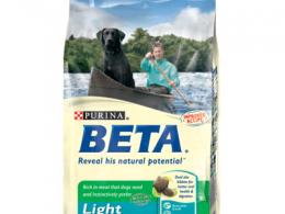 Beta Light