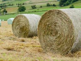 Premium Round Bale Haylage