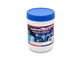 Cortaflex HA Regular Strength